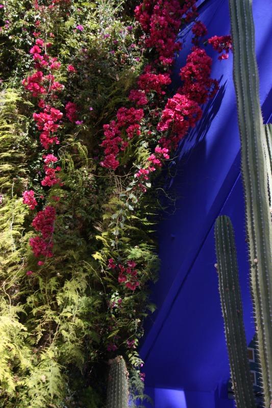 Les jardins de Majorelle à Marrakech